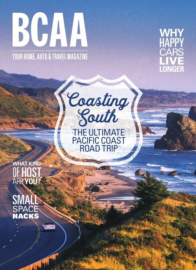 BCAA Magazine Summer 2018